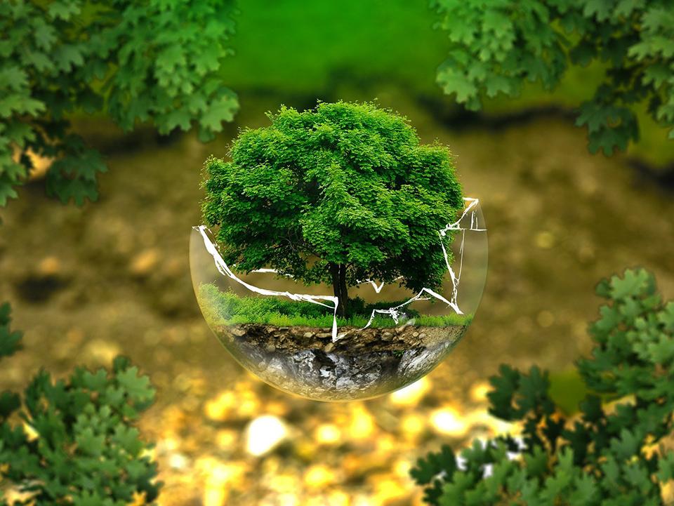 #ConoceSmartfuel: Compromiso con el medioambiente